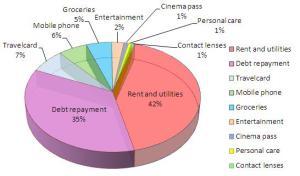 June 2013 Budget Chart